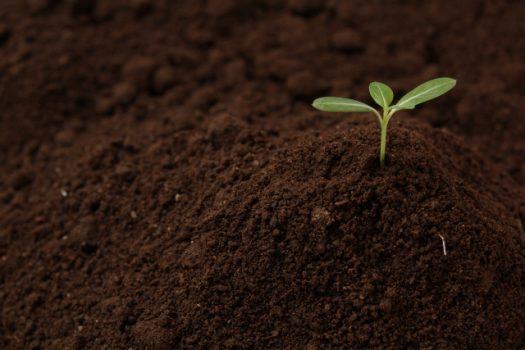 【1】固まる土を使用する