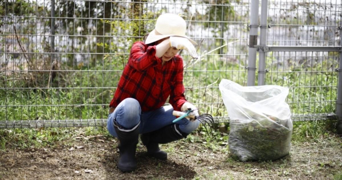 庭の草刈り法