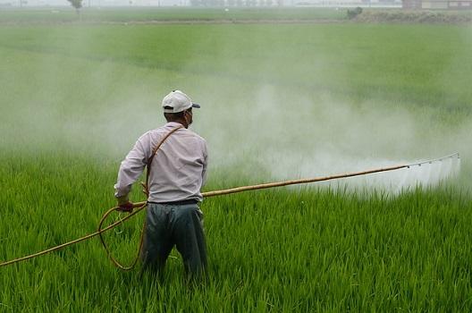 【予防策1】除草剤を撒いておく