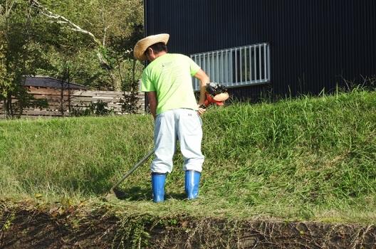草刈りの理想は年3回!