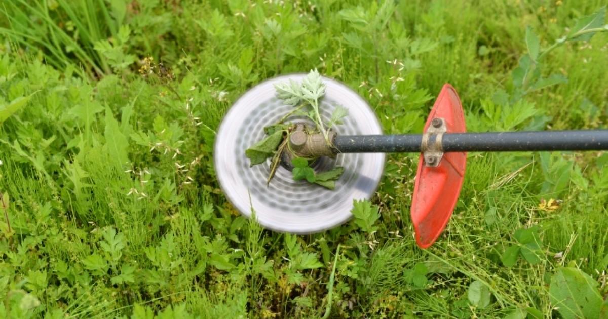 畑の草刈り方法
