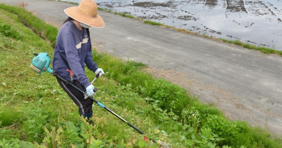 草刈りを女性でも楽におこなう方法