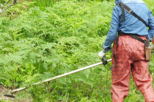 草刈り機ナイロンコードの巻き方|種類・特徴・選び方も確認しよう!