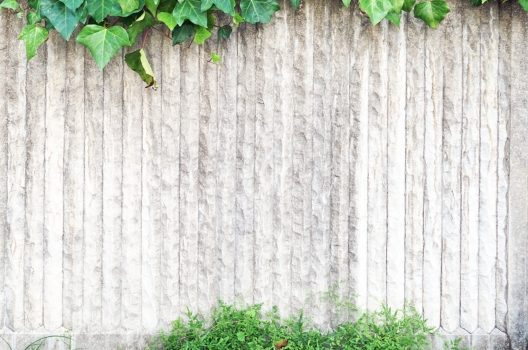 状況1:舗装と壁の境目