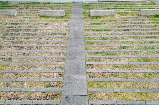 駐車場を除草するなら除草剤!使用するメリットや方法・使用時のコツ