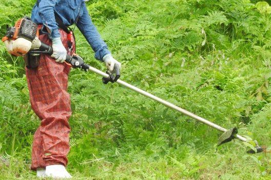 女性が扱う草刈機|購入前にここをチェック!おすすめ種類や特徴