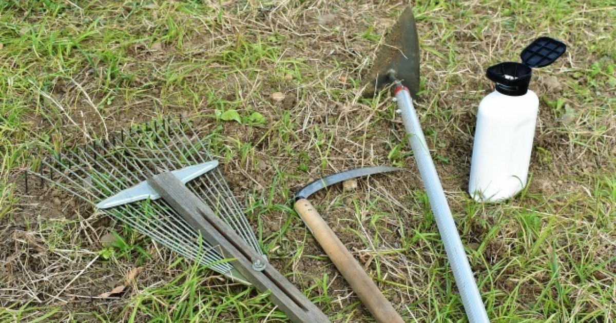 草刈り後 除草剤
