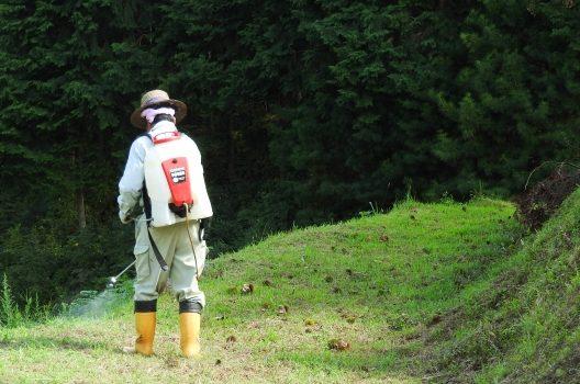 【ステップ1】 除草剤を撒く