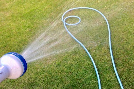 草むしりの直前に水をまく